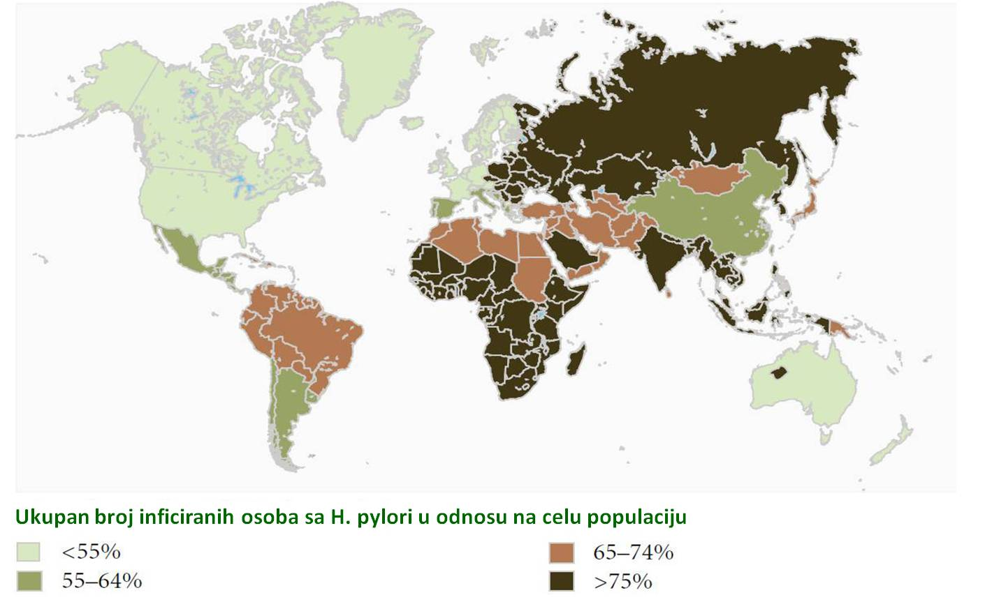 The prevalence of H. pylori world